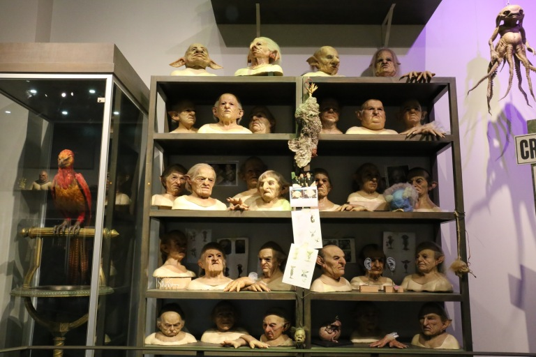 A shelf full of heads. Creature shop.