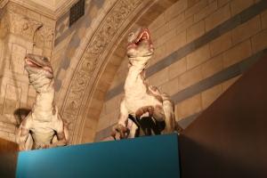 Dromaeosaurus animatronic dinosaurs - these guys had a blood-curdling screech