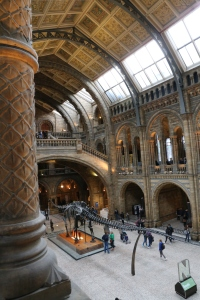 Another view of the great hall