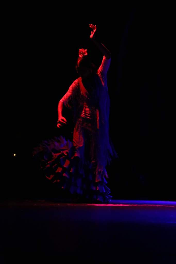 The shapes the flamenco dancers make with their bodies are distinctive and characteristic.
