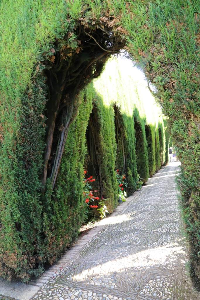There were lots of carefully manicured hedges in the garden, creating little hideaways all over the place