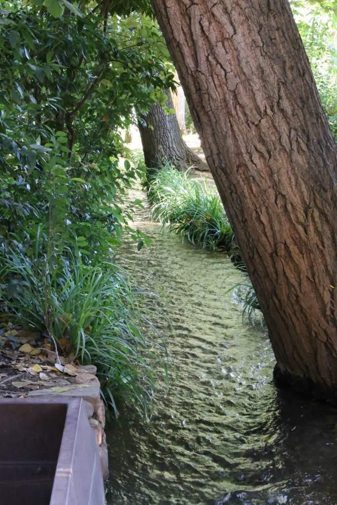 This little creek flows through part of the gardens