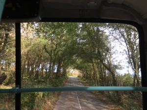 View out the front of the bus
