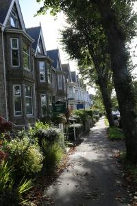 Lovely homes on Alexandria St.
