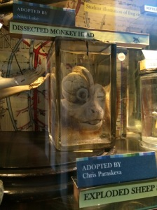 Dissected monkey head - wishing you hadn't scrolled down, aren't you?