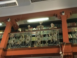 The Waldorf and Statler skeletons... really probably just some regular skeletons on a balcony