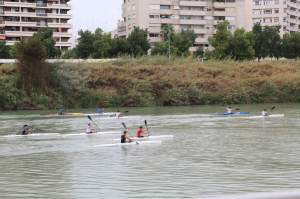 Rowers on the Guadalquivir River, taken from a river cruise.