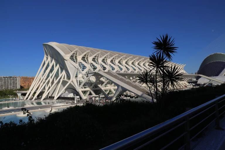 El Museu de les Ciències Príncipe Felipe - the design of this building is based on the skeleton of a dinosaur