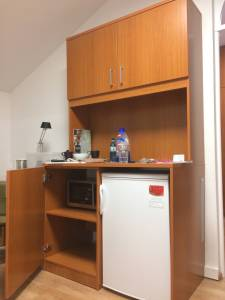 Microwave and fridge in the room.