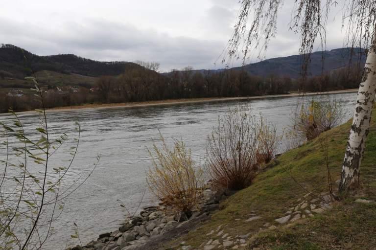 Danube5