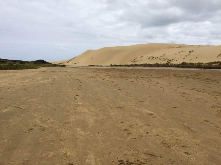 Duning8