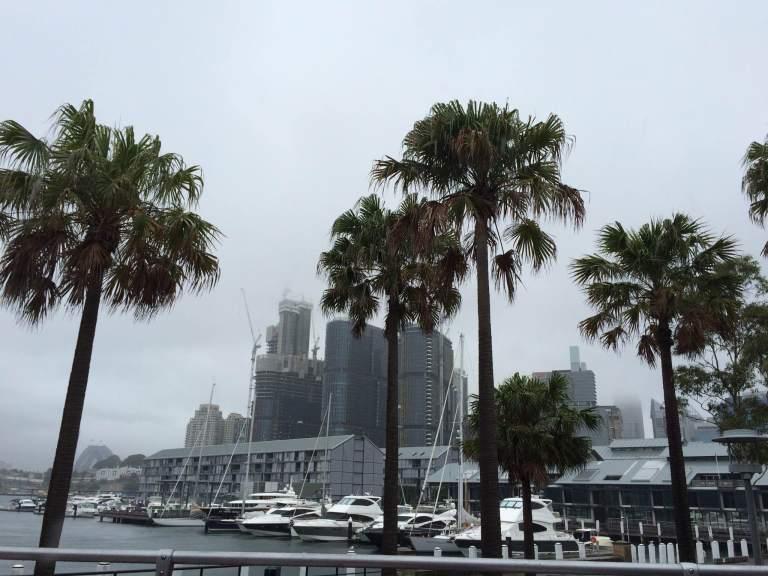 Sydney44