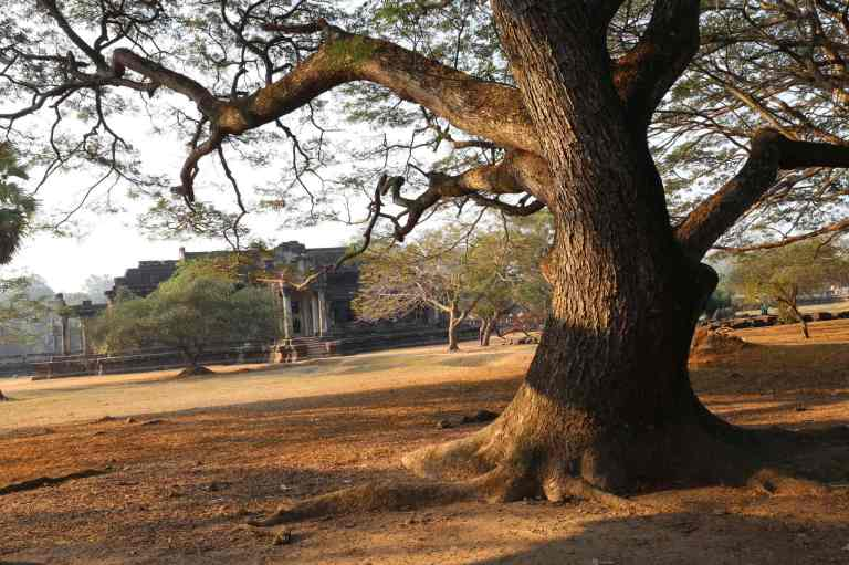 AngkorWatMkt5