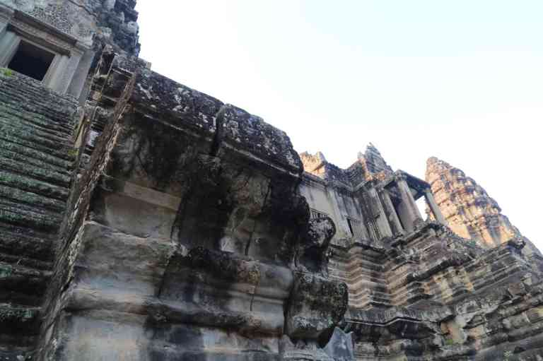 AngkorWatMonkeys12