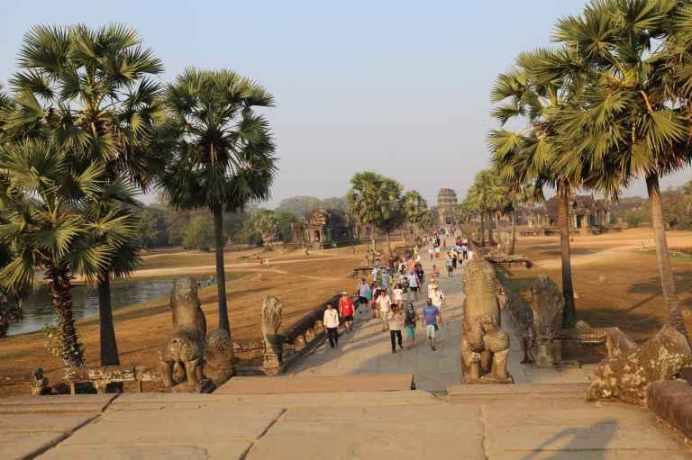 AngkorWatMonkeys17
