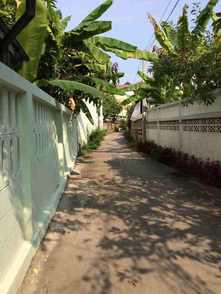 ChiangMai24
