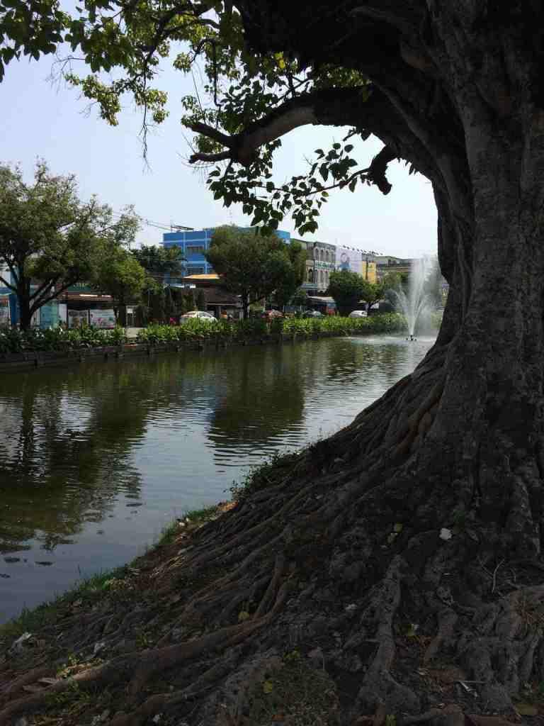 ChiangMai8