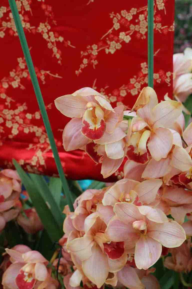 FlowerDome27
