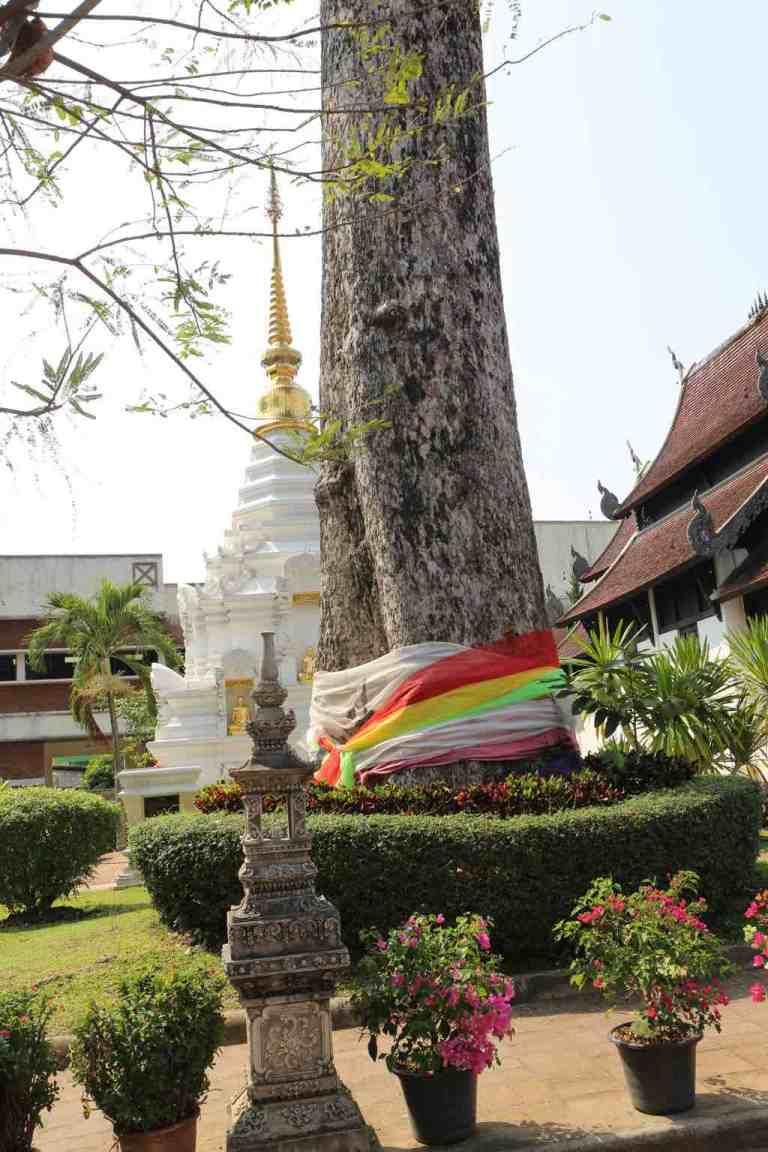 Luang15