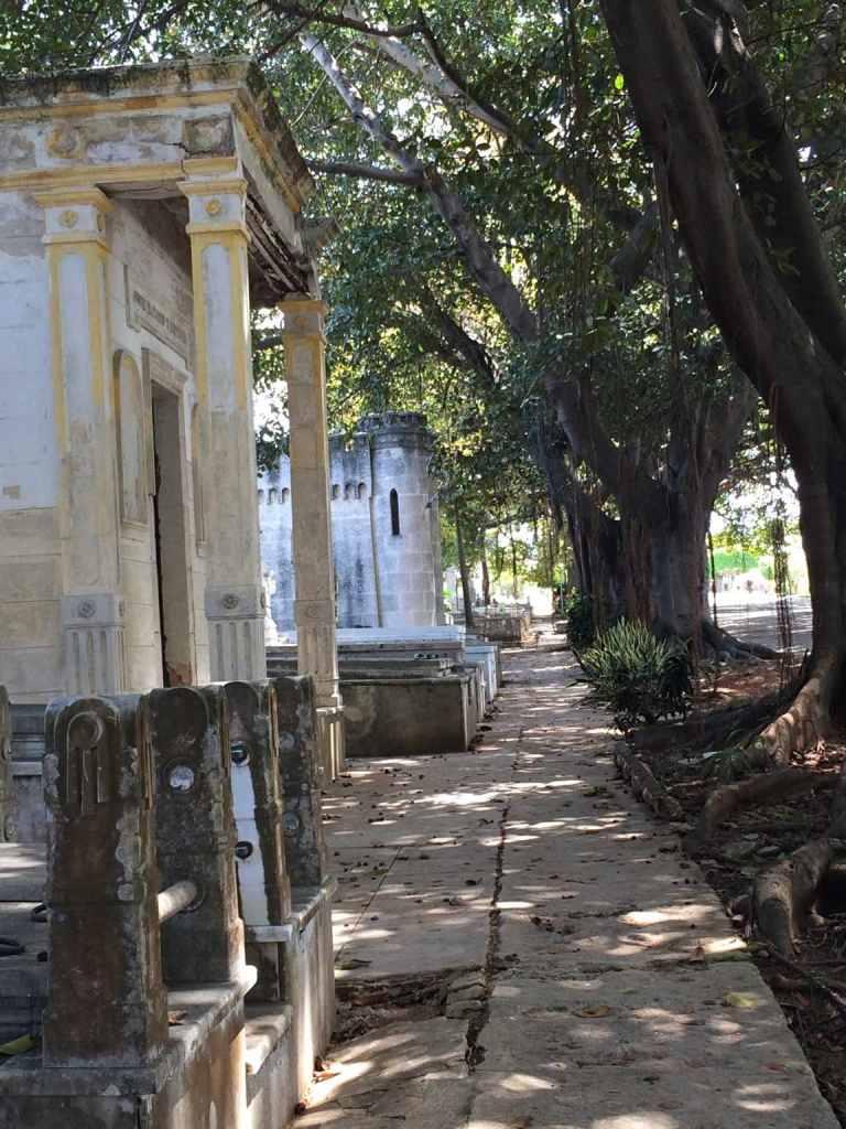 Cemetery22