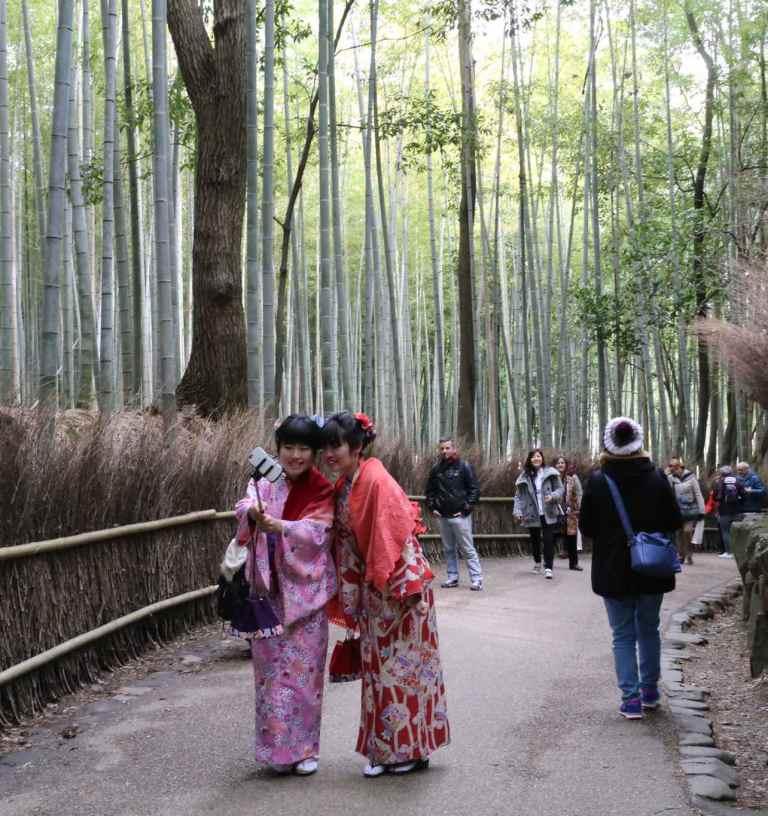 KyotoBamboo12