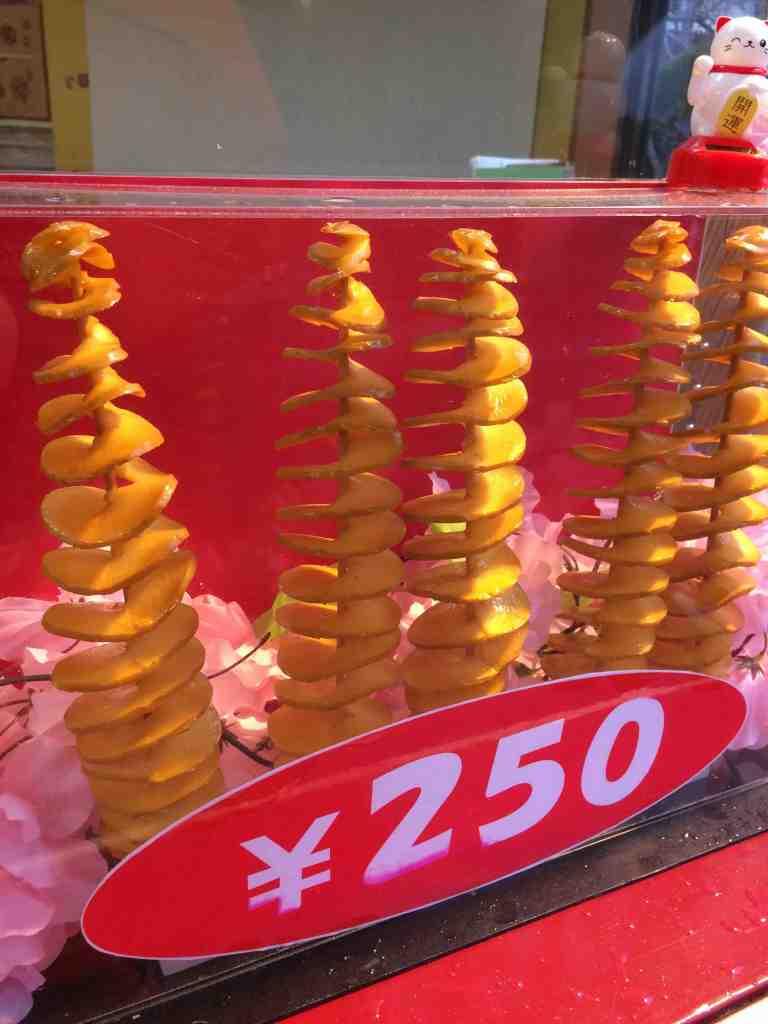KyotoGinkakuji27