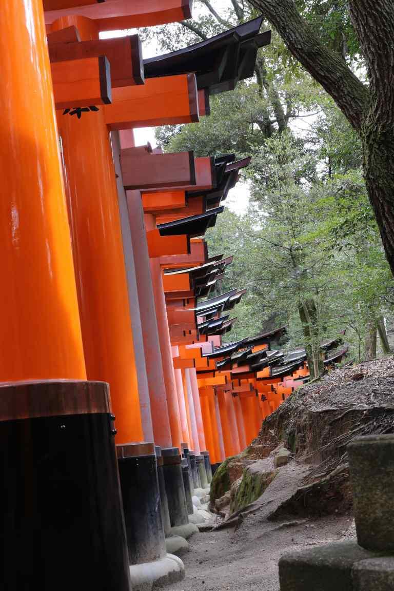 KyotoInari24